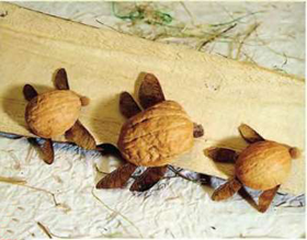 поделки из скорлупы грецкого ореха - черепашка