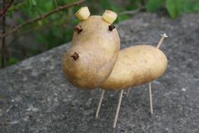 Поделки из картошки
