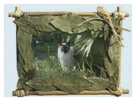 Прекрасная рамка для фотографий из осенних листьев